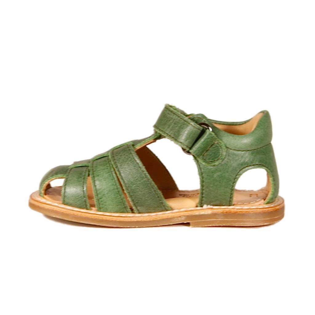 Zecchino d'oro A31-3106 green