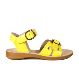 Petasil 3766 yellow