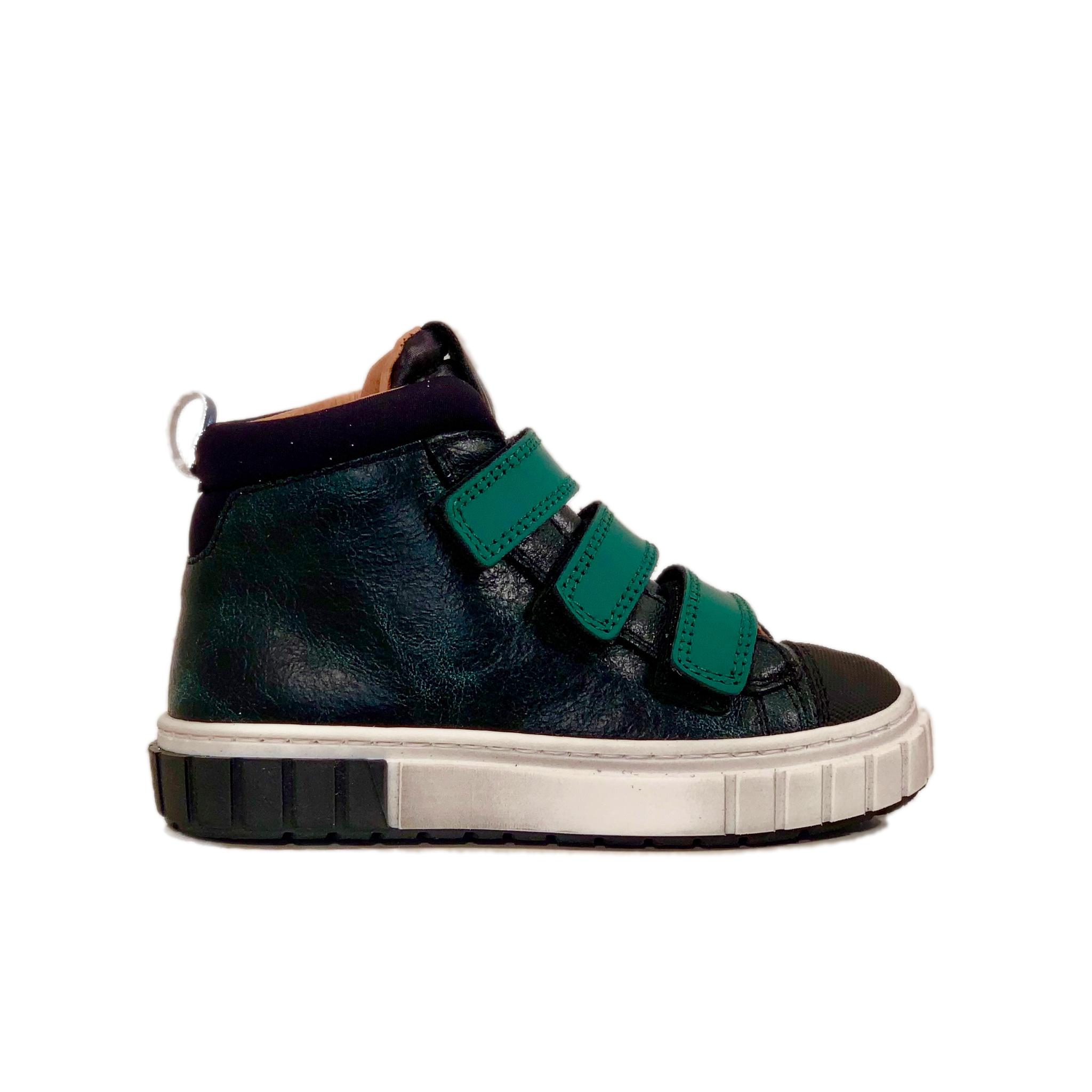Romagnoli 4599 verde