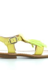 Gallucci 242 neo giallo