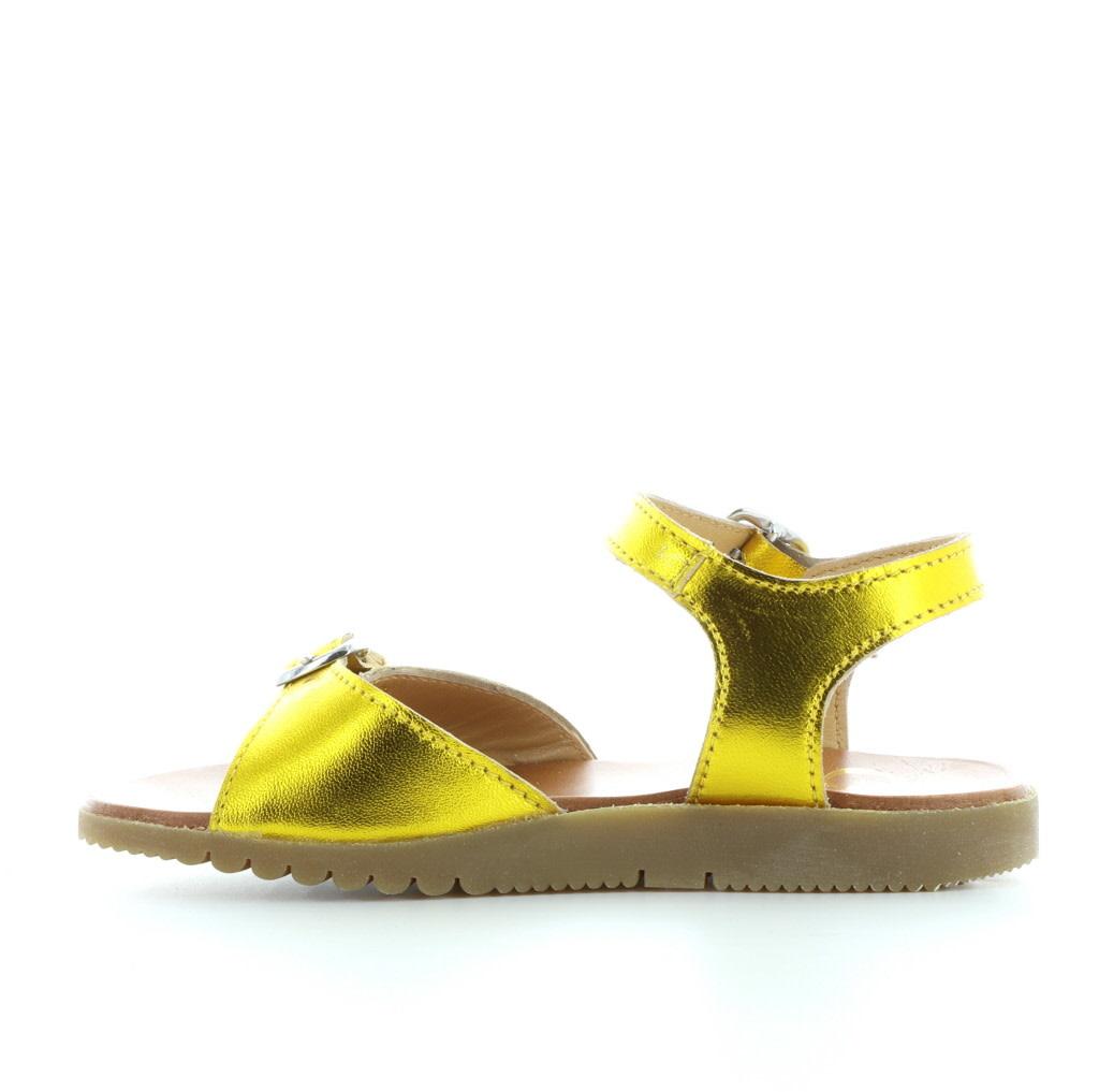 Gallucci 455 oro
