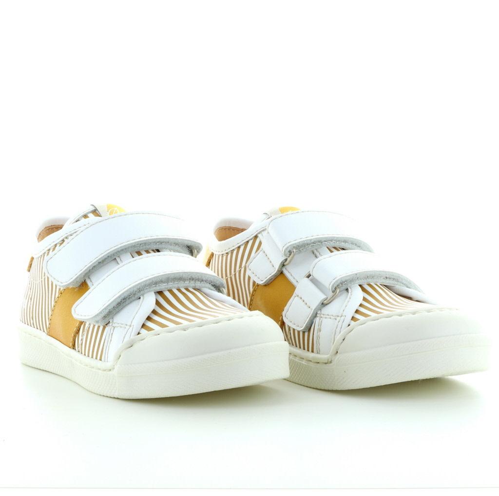 Ocra 504 bianco girasole