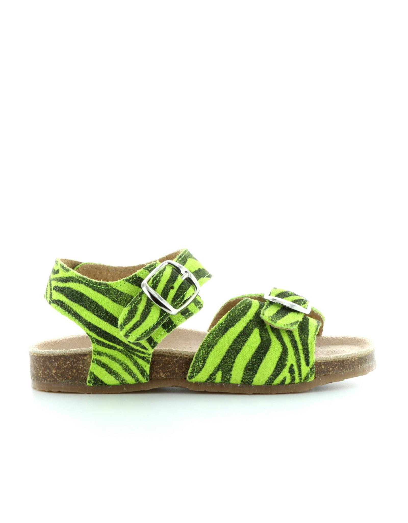 Pèpè 920 tigre verde