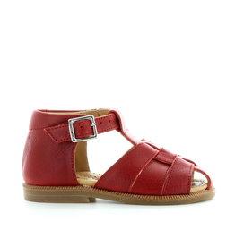 Zecchino d'oro A01-065 red