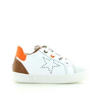 N11-1146 bianco arancio