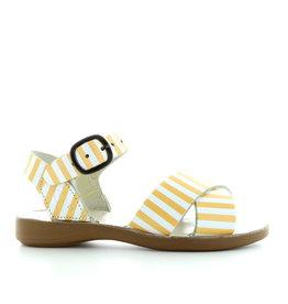 Petasil 3762 yellow stripes