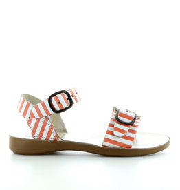 Petasil 3768 coral stripes