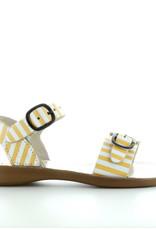 Petasil 3768 yellow stripes