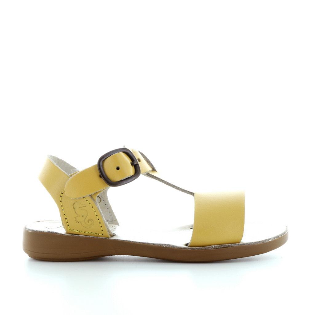 Petasil 3873 yellow