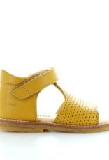 Angulus 0517 yellow