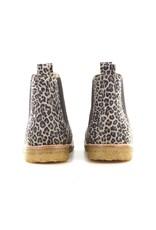 Angulus 2192 leopard