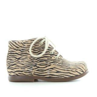 Nioupi zebra