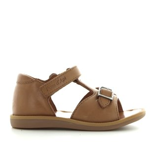 Poppy easy camel
