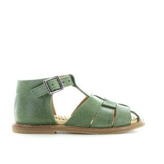 A01-065 velvet green