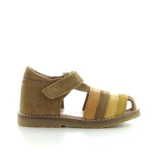 2544 amber suede
