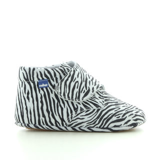 0911 zebra
