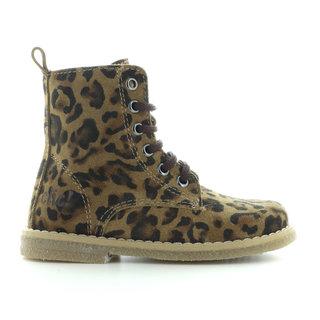 8834 leopardo