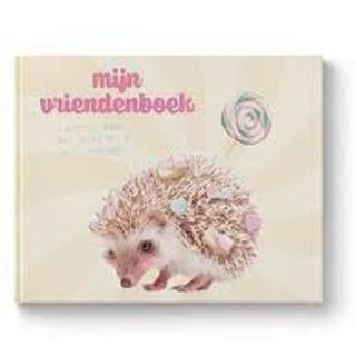 Copy of Vriendenboekje boys