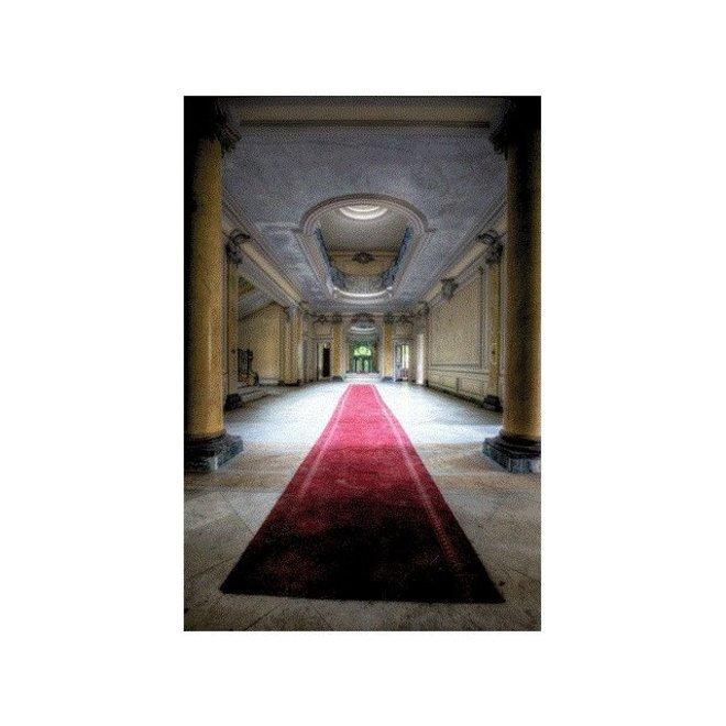 Alu Art Red Carpet 120x80