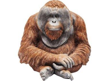 Kare Monkey Orangutan