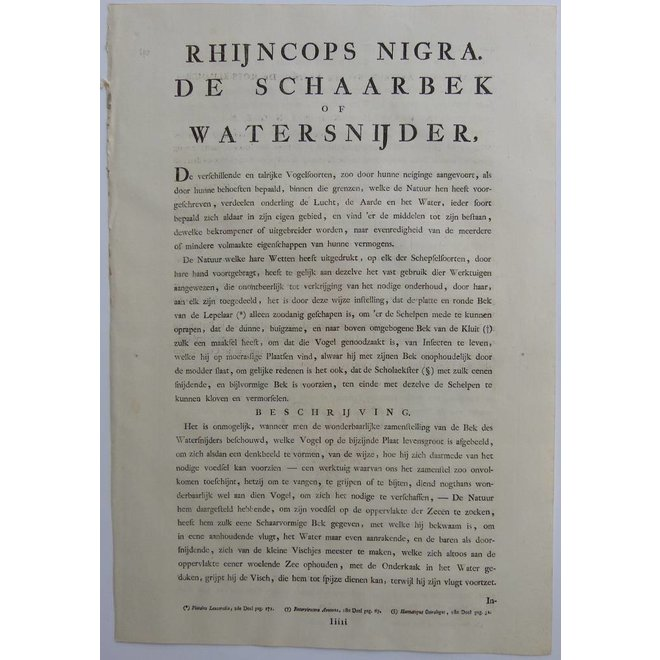 Collectie Gouldmaps - Schaarbek; C. Nozeman - Rhynschops Nigra - 1829