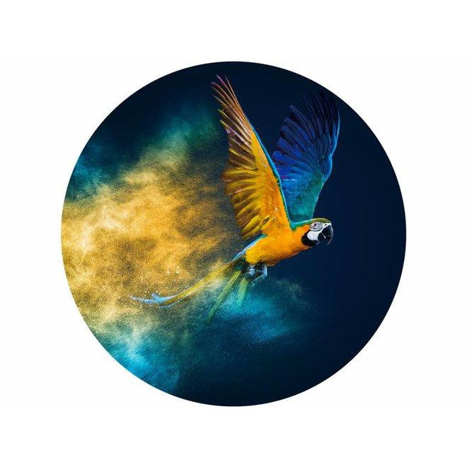 Glass Art Parrot round 100
