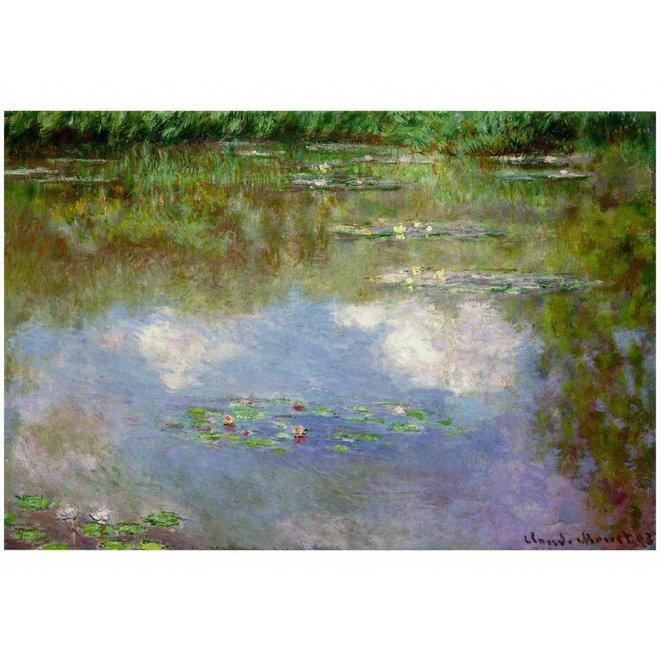 Lakdoos Waterlelies
