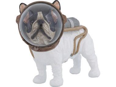 Kare Space Dog