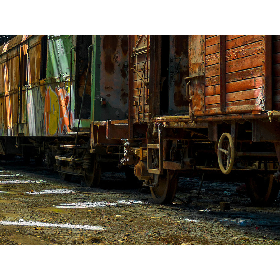 Spiegelprofi Glass Art Railway Wagons 90x120