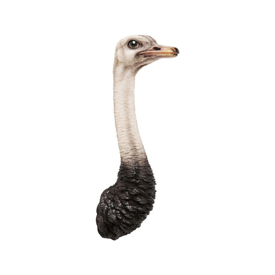 Kare Wandobject Struisvogel
