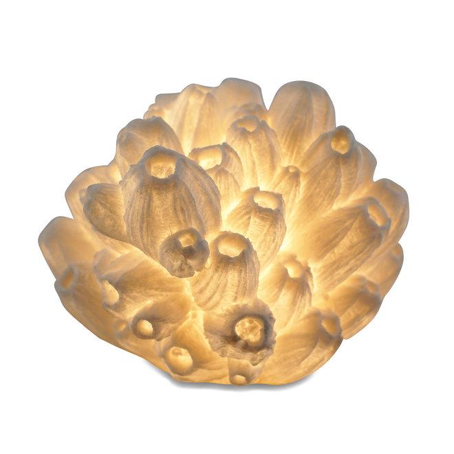 Tafellamp Reef