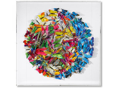 Kare Swarm of Colored Butterflies in 3D, framed in white 60x60