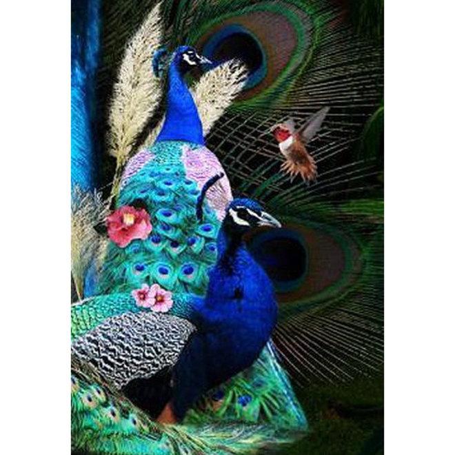 Glasschilderij 'Pauw in blauw' 80x120