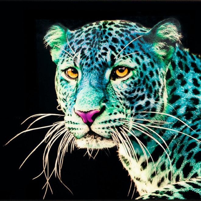 "Wanddeco glas ""Blue Leo"""