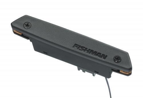 Fishman Rare Earth | Single coil | soundhole pickup