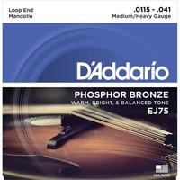 D'Addario EJ75 Mandolin Strings Phosphor Bronze, Light 11.5-41