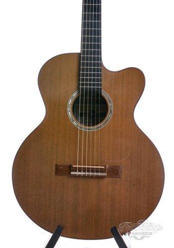 Greven Guitars Greven J Custom Classical  Crossover Cedar Rosewood 1994