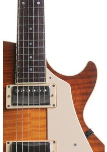 Collings Deposit: Collings Electric Custom Building Slot