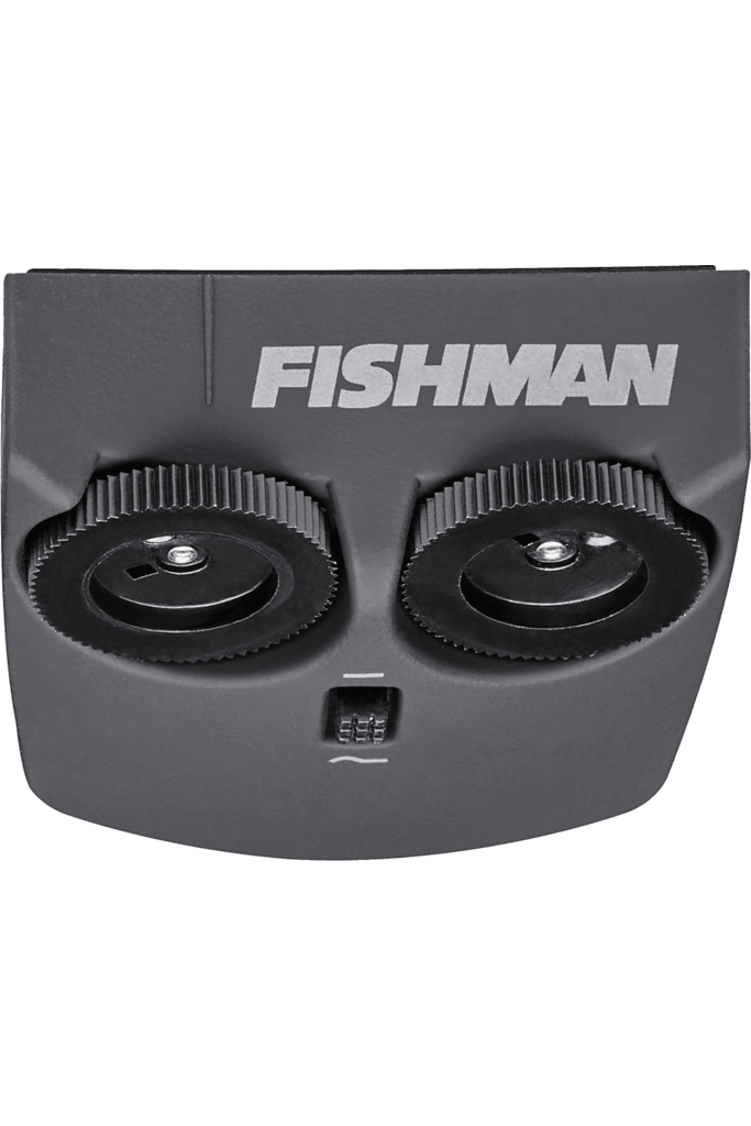 Fishman Matrix Infinity Blend Narrow Format