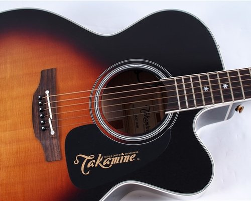 TFOA is now Takamine Dealer!