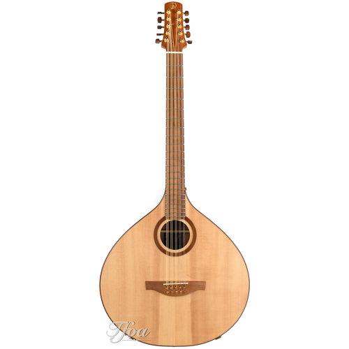 Dreizehnter Heiner Dreizehnter Bouzouki - Cittern 10 string 2007