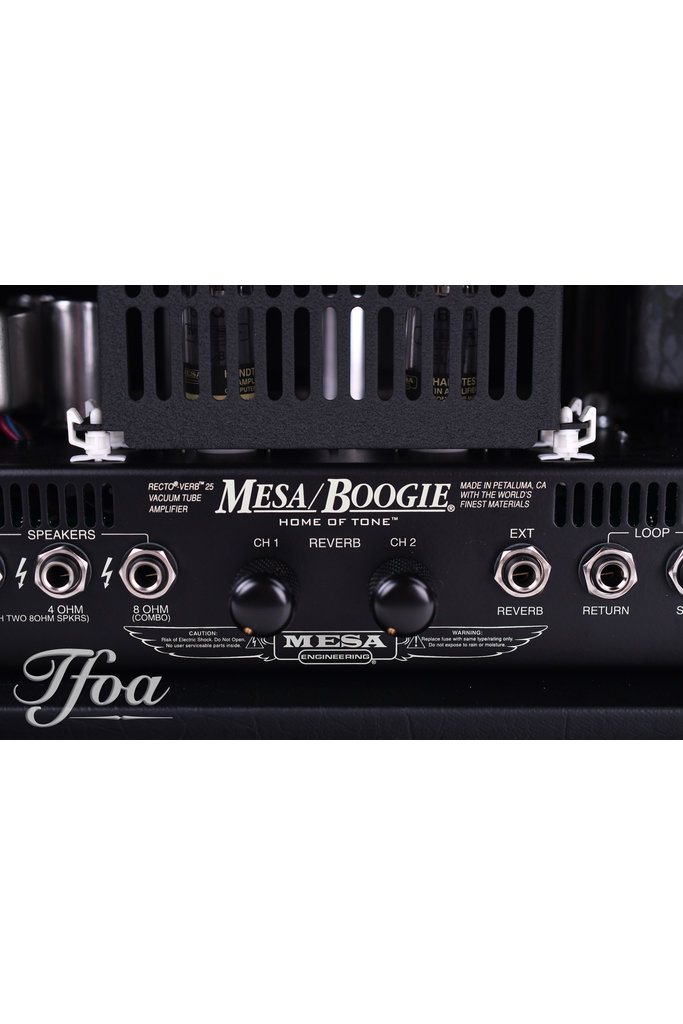 Mesa Boogie Rectoverb 25 Wicker Grill Head