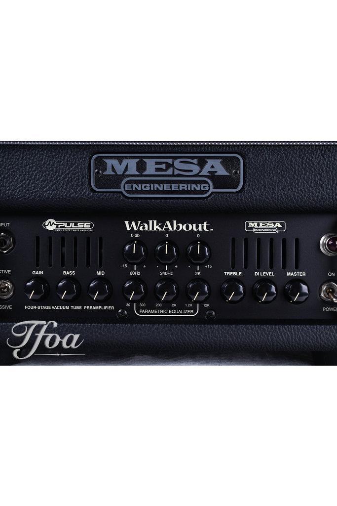 Mesa Boogie Walkabout Bass Head