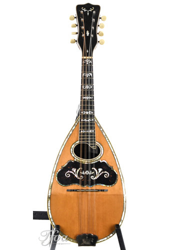 Supertone Supertone by Washburn Bowlback mandolin ca. 1910