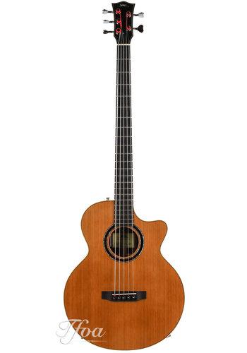 BSG BSG GJ27 CF akoestische Bass used