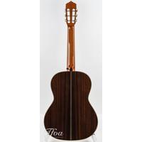 Alhambra Linea Profesional Classical guitar 2018