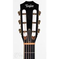 Taylor XXX-MS 30th Anniversary Limited edition 2004 Near Mint