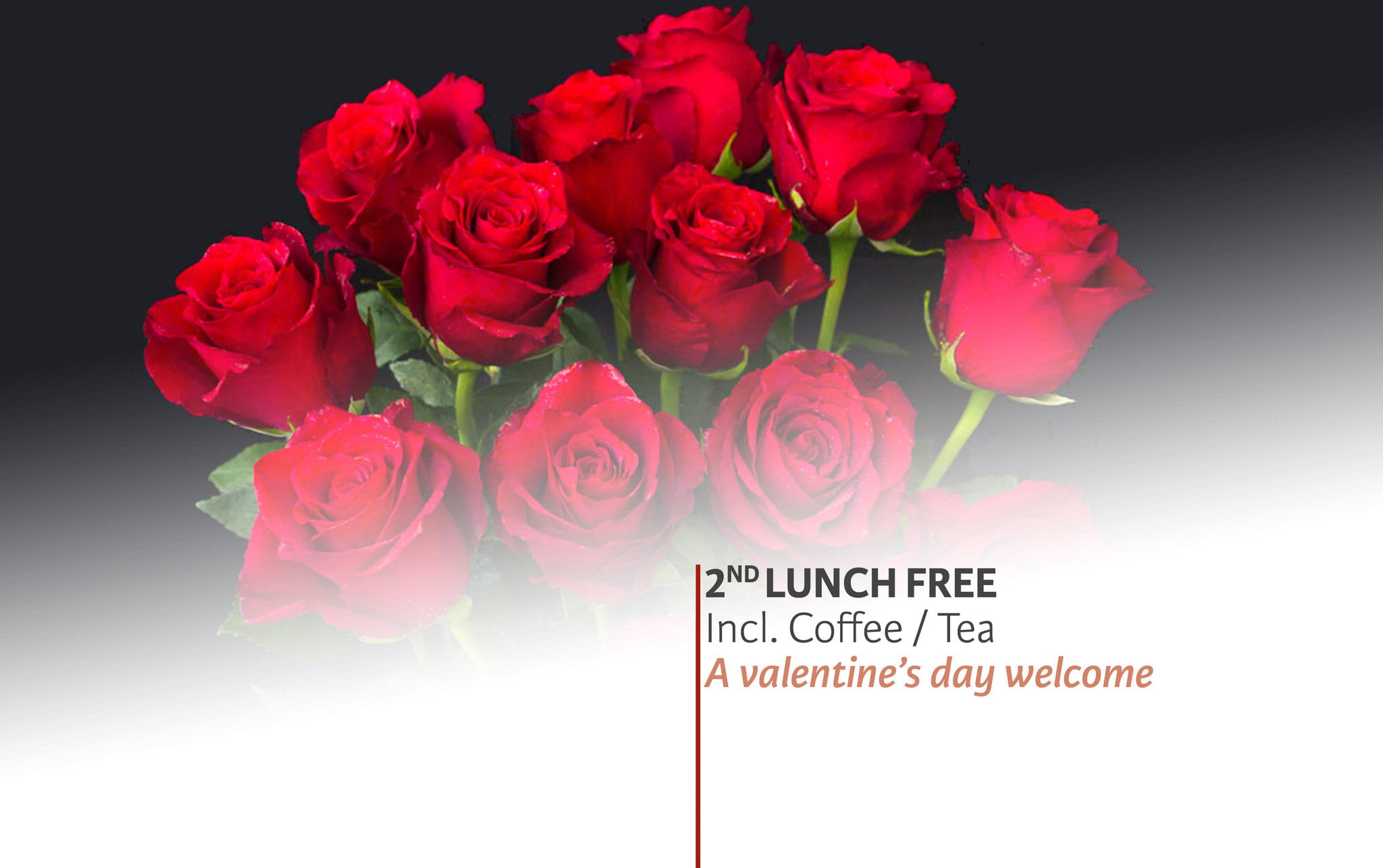 2nd Lunch For Free @ TFOA! | Valentine's Day