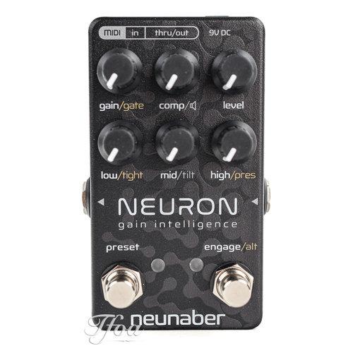 Neunaber Neunaber Neuron Gain Intelligence