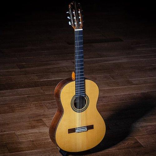 Concert guitars